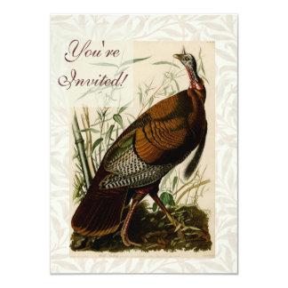 Audubon Wild Turkey Vintage Birds of America Card