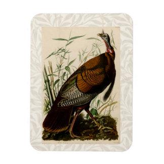 Audubon Wild Turkey Vintage Birds of America Magnet