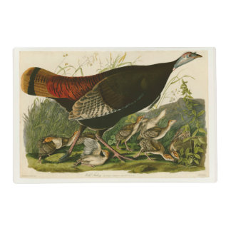 Audubon Wild Turkey Vintage Birds of America Placemat