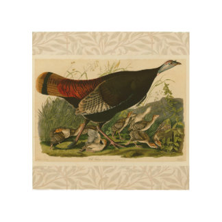 Audubon Wild Turkey Vintage Birds of America Wood Canvases