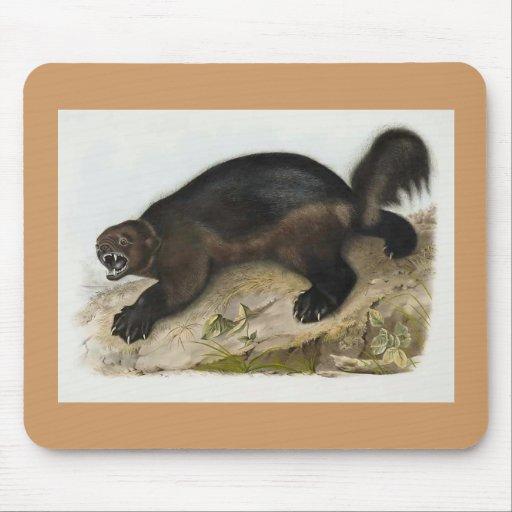 Audubon - Wolverine Mouse Pad