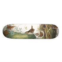 Audubon Wren Birds Wildlife Animal Nest Skateboard