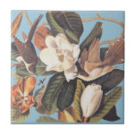 "Audubon&#39;s Black Billed Cuckoo Ceramic Tile<br><div class=""desc"">Audubon&#39;s Black Billed Cuckoo bird pair chasing bugs in a magnolia tree with flowers. Vintage art reproduction of a John James Audubon original print.  This is Plate 32 from Audubon&#39;s &quot;Birds of America&quot; series.</div>"