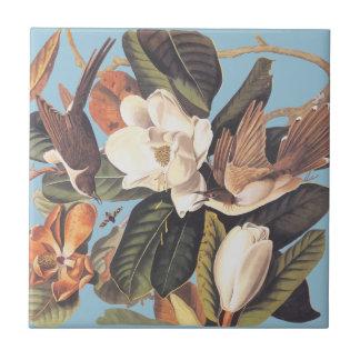 Audubon's Black Billed Cuckoo Ceramic Tile