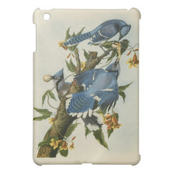 Case Savvy iPad Mini Glossy Finish Case with Audubon's Blue Jays design