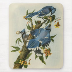 Mousepad with Audubon's Blue Jays design