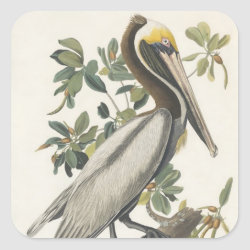 Square Sticker with Audubon's Brown Pelican design