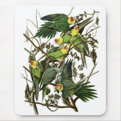 Mousepad with Audubon's Carolina Parakeet design
