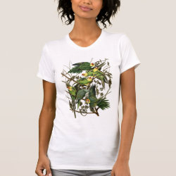 Women's American Apparel Fine Jersey Short Sleeve T-Shirt with Audubon's Carolina Parakeet design