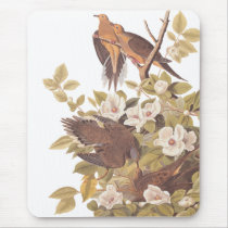 Audubon's Carolina Turtle Dove Mouse Pad