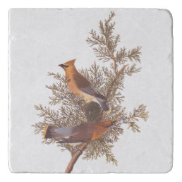 Audubon's Cedar Waxwing Birds on Evergreen Juniper Trivet