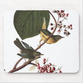 Audubon's Extra Warbler Mouse Pad