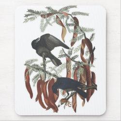 Mousepad with Audubon's Fish Crow design
