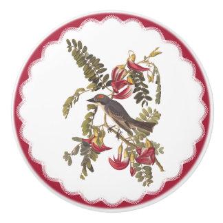 Audubon's Gray Tyrant Bird Vintage Bookplate Art Ceramic Knob