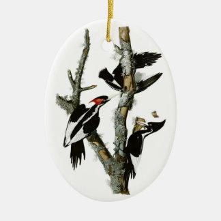Audubon's Ivory-billed Woodpecker Ceramic Ornament