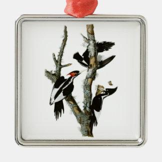 Audubon's Ivory-billed Woodpecker Metal Ornament