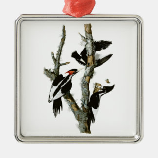 Audubon's Ivory-billed Woodpecker Square Metal Christmas Ornament