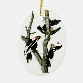 Audubon's Ivory-billed Woodpecker Double-Sided Oval Ceramic Christmas Ornament
