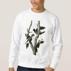 Men's Basic Sweatshirt with Audubon's Ivory-billed Woodpecker design