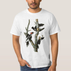 Men's Crew Value T-Shirt with Audubon's Ivory-billed Woodpecker design
