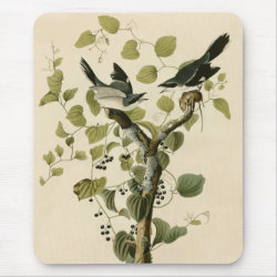 Mousepad with Audubon's Loggerhead Shrike design