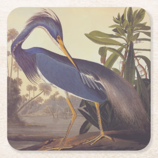 Audubon's Louisiana Heron or Tricolored Heron Square Paper Coaster