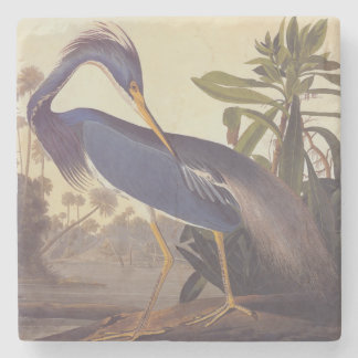 Audubon's Louisiana Heron or Tricolored Heron Stone Coaster