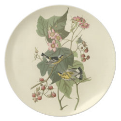Plate with Audubon's Magnolia Warbler design