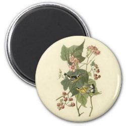 Round Magnet with Audubon's Magnolia Warbler design