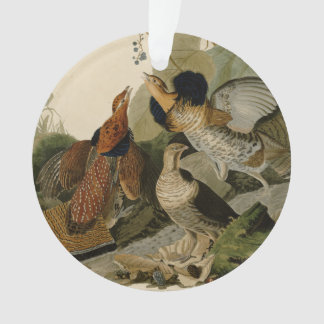 Audubon's Painting of a trio of Ruffed Grouse