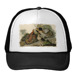 Audubon's Painting of a trio of Ruffed Grouse Trucker Hat