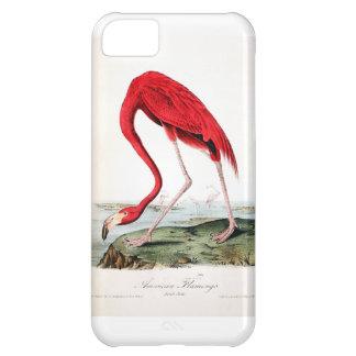 Audubon's Red Flamingo Case For iPhone 5C