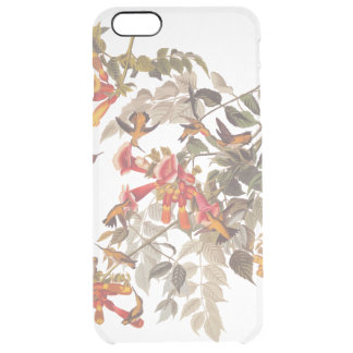 Audubon's Ruby Throated Hummingbirds and Flowers Clear iPhone 6 Plus Case