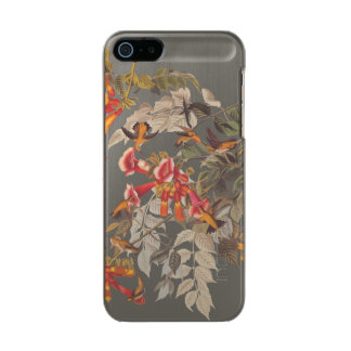 Audubon's Ruby Throated Hummingbirds and Flowers Metallic Phone Case For iPhone SE/5/5s