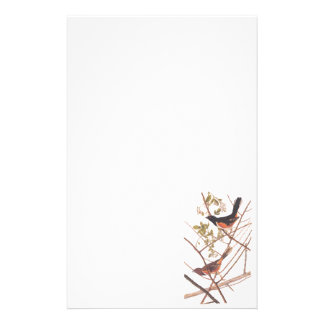 Audubon's Towee Bunting Stationery