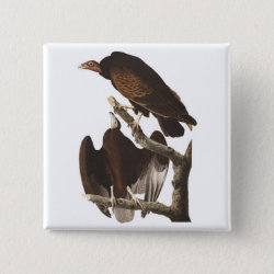 Square Button with Audubon's Turkey Vulture design