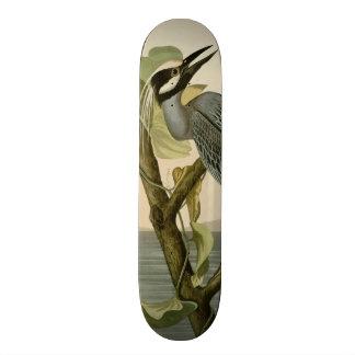 Audubon's Vintage Yellow crowned night heron paint Skateboards