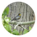 Audubon's Warbler Bird Photography Classic Round Sticker