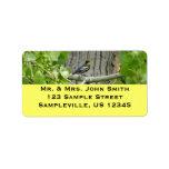 Audubon's Warbler Bird Photography Label