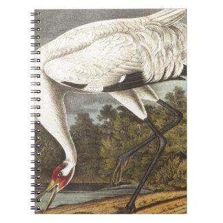 Audubon's Whooping Crane Notebook