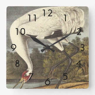 Audubon's Whooping Crane Square Wall Clock