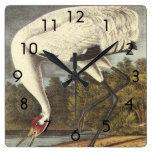 Audubon's Whooping Crane Square Wallclock