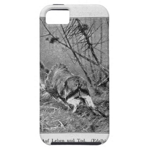 Auf Leben und Tod (Edelhirsche in der Brunft) by R iPhone 5 Cases