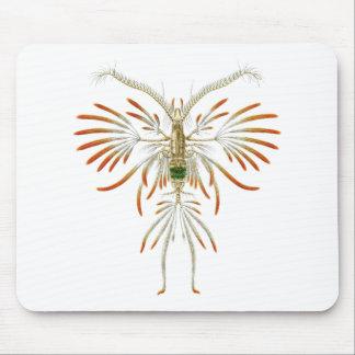 Augaptilus filigerus mouse pad