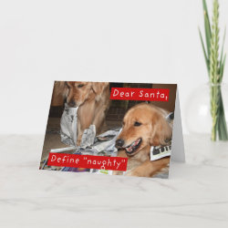 Augie & Ti Golden Retriever Christmas Card