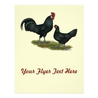 Augsburger Chickens Flyer