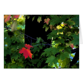 August Autumn Notecards Card