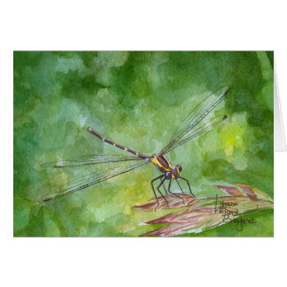 August Dragonfly Card