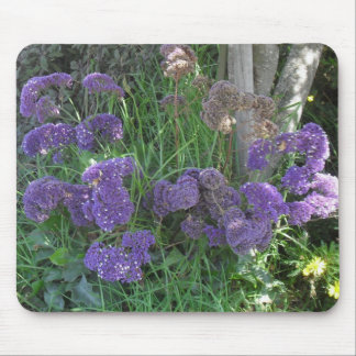 August flowers mouse pad