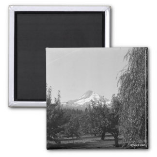 August Mt Hood Magnet 2 Inch Square Magnet